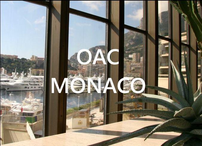 OpenArtCode Montecarlo