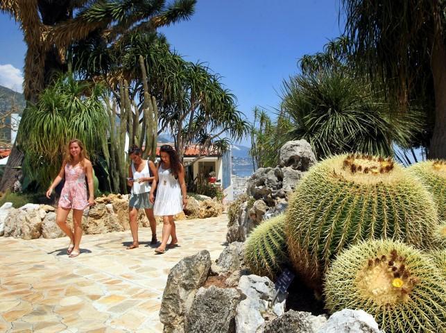 Экзотический сад Монако