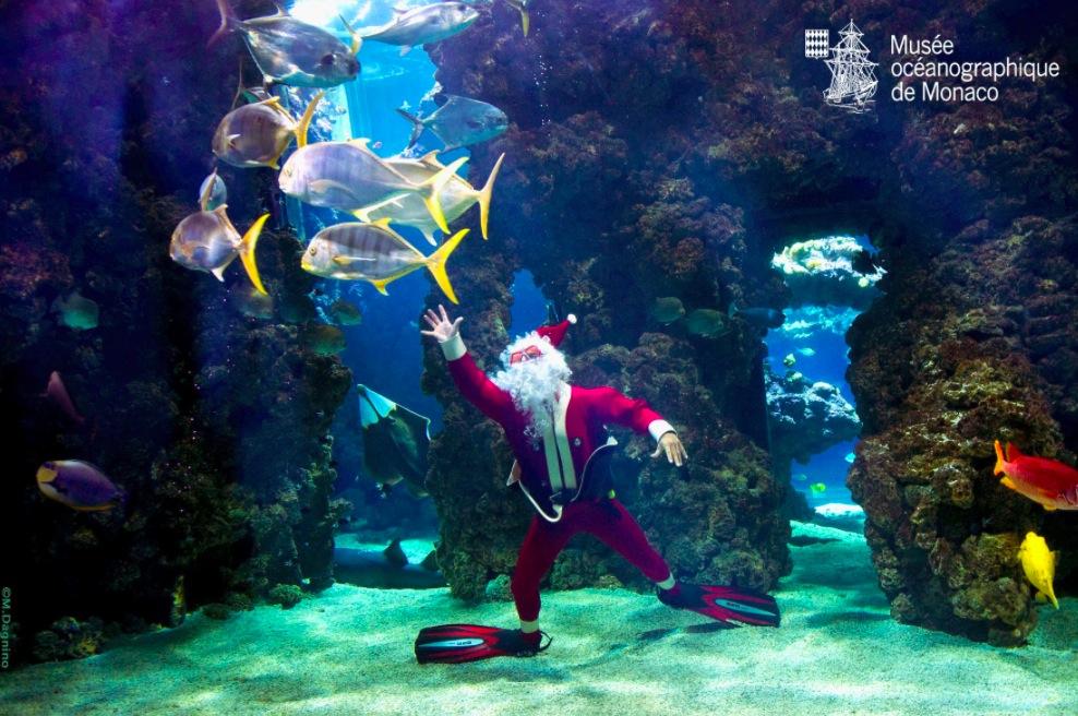 Погружение Санта-Клауса в аквариум