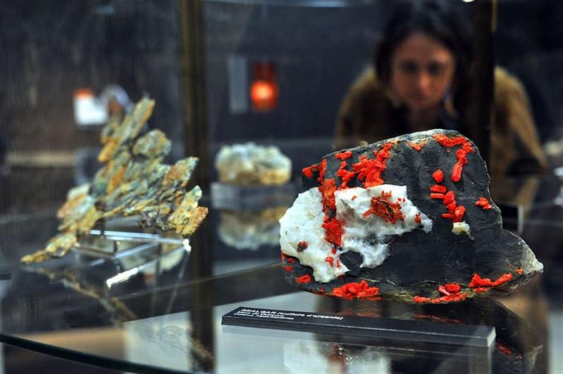 Выставка камней в Ницце