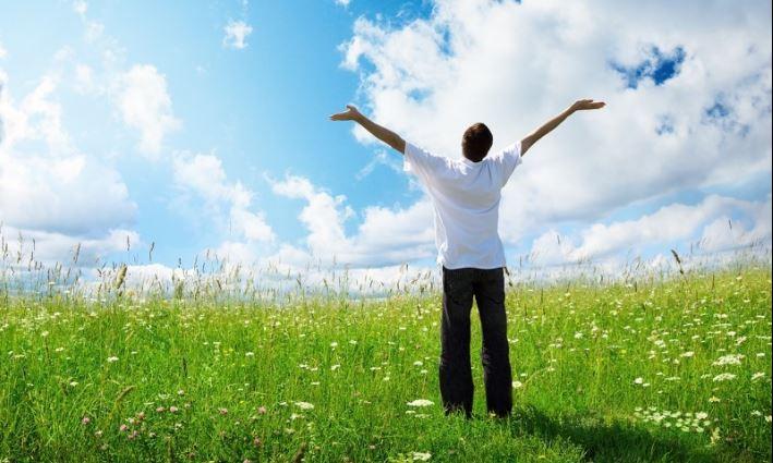 Всемирный день Wellness