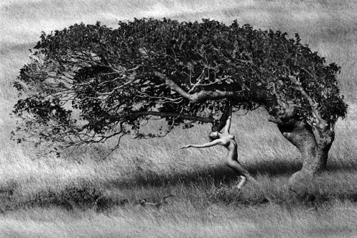 Эшли у дерева, работа Марко Главиано