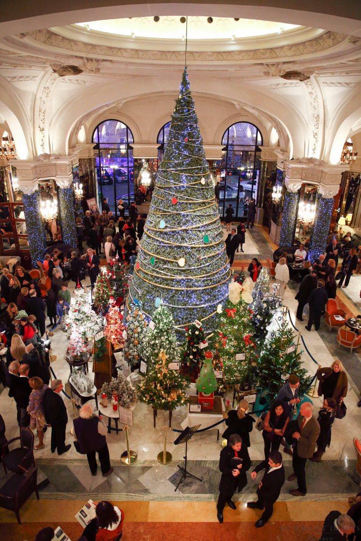 Аукцион Рождественских елей