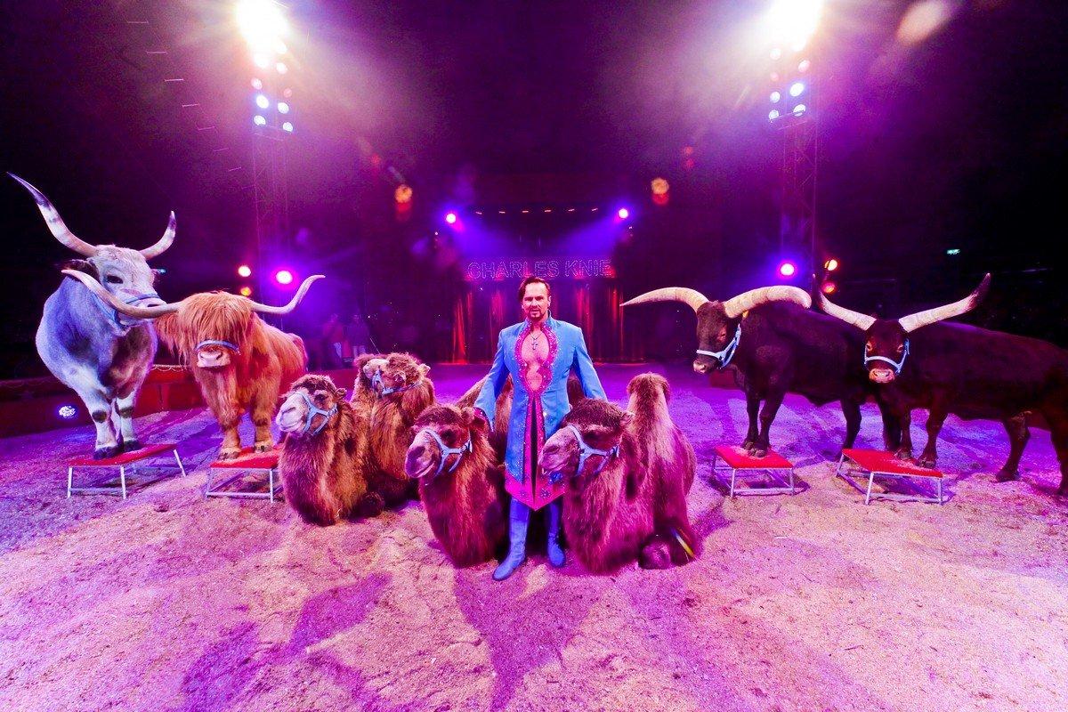 Цирковой фестиваль Монте-Карло