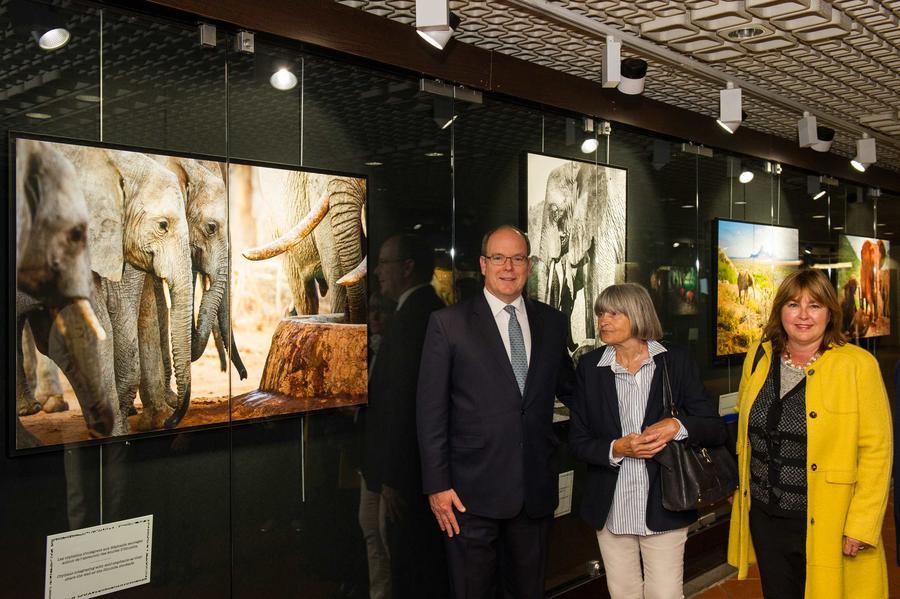Князь Монако посетил выставку в галерее Pêcheurs