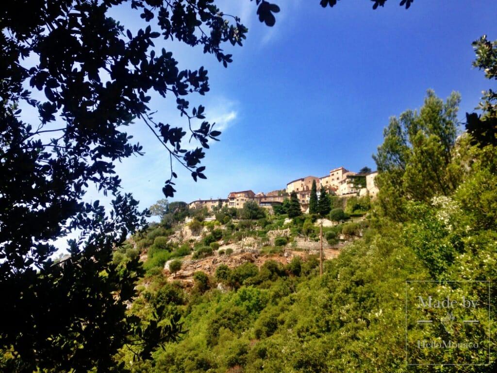 Прогулки вокруг Монако: тропа Ницше