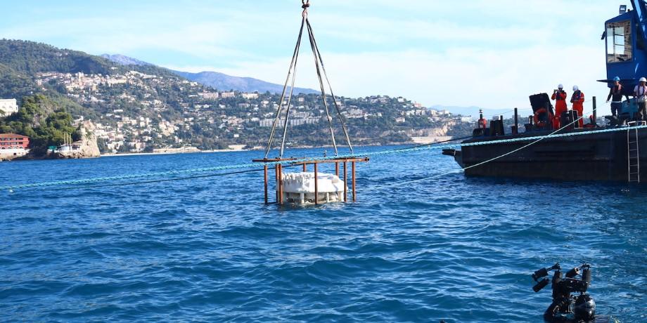 В Монако установили искусственные рифы