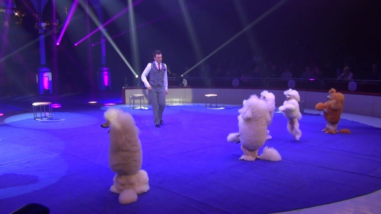 Кто выступит на 42-м Международном цирковом фестивале Монако?