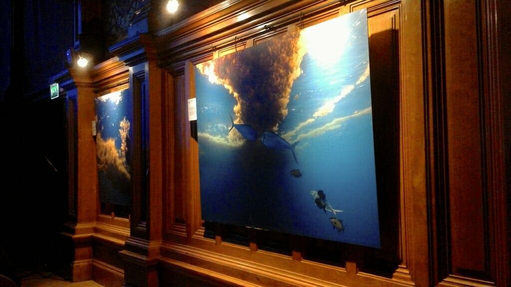 2-я Неделя Океана: защита биоразнообразия подводного мира