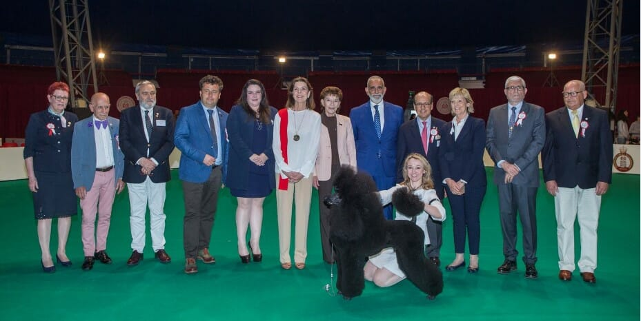 Красная дорожка 91-ой Международной выставки собак в Монако