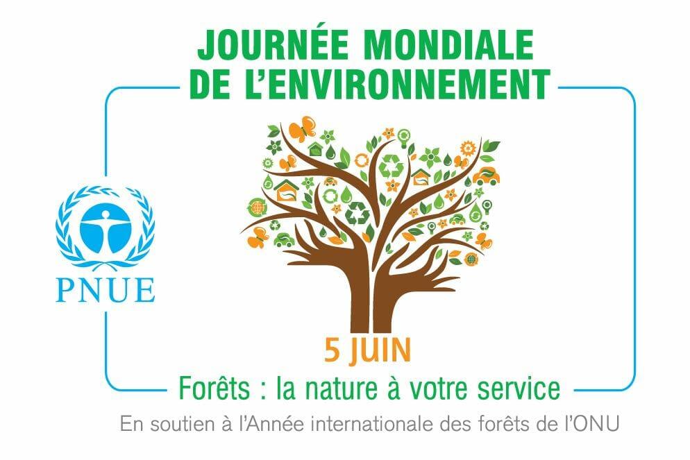 Всемирный день окружающей среды: «Борьба с загрязнением пластиком»