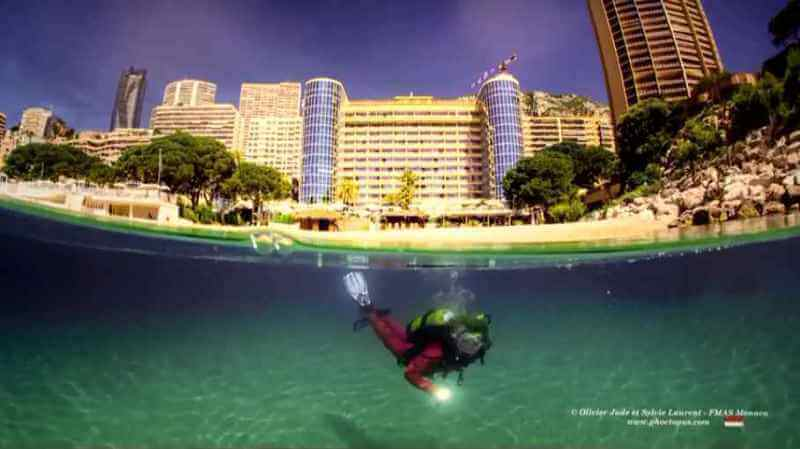 Выставка фотографий подводного мира в отеле Méridien