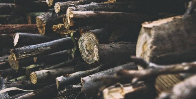 Монако против вырубки лесов