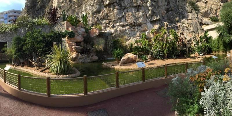 Зоопарк Монако пока остается закрытым