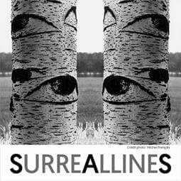 Выставка фотографий «SURREALLINES»