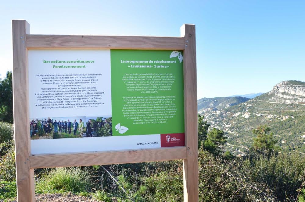 Мэрия Монако вновь поддержала инициативу «1 малыш = 1 посаженное дерево»