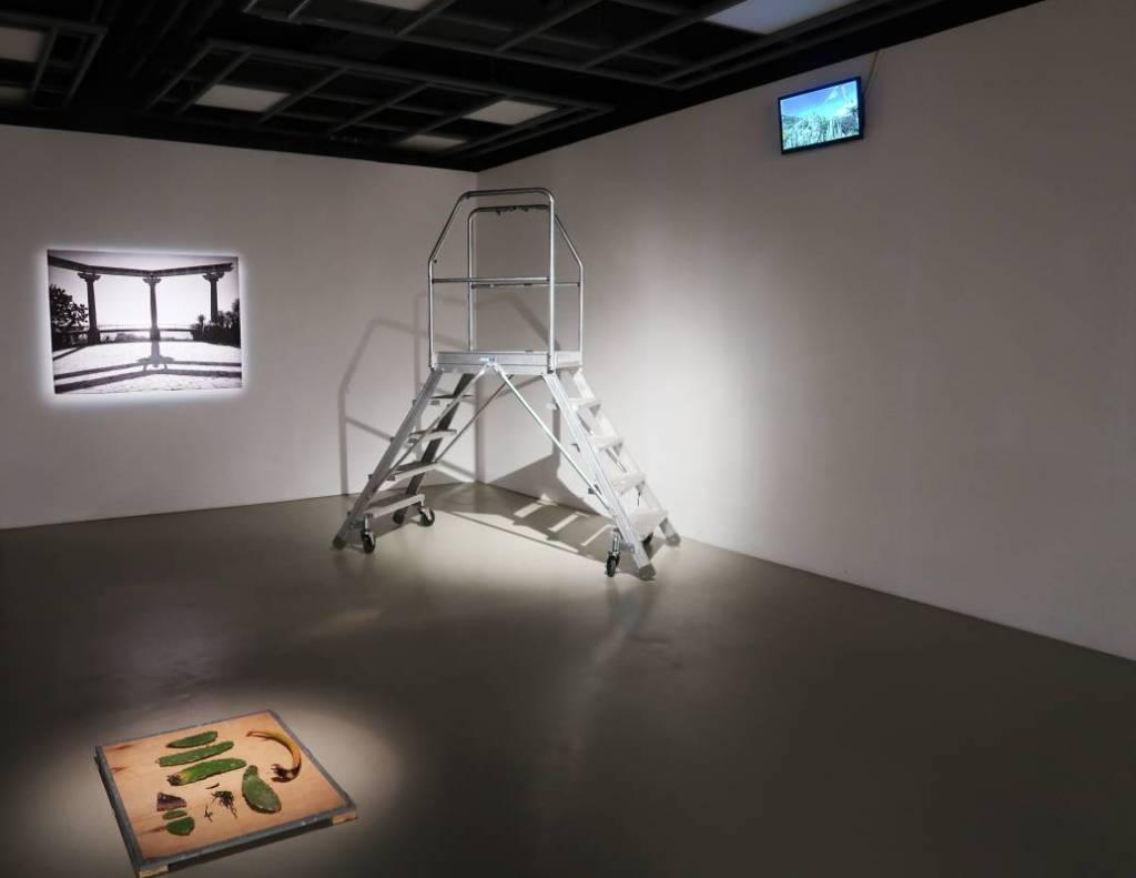Jardin en Cours: интерактивный и многогранный шоурум