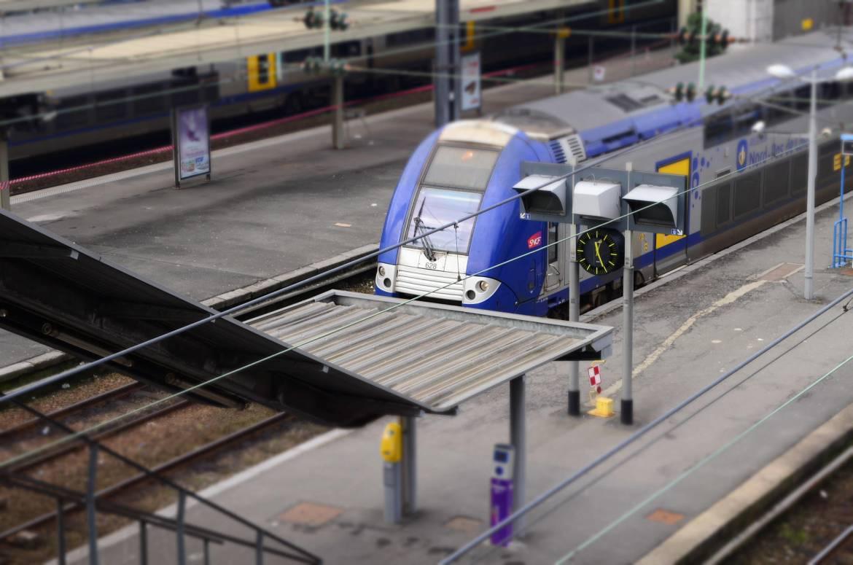 Постепенное возобновление железнодорожного сообщения