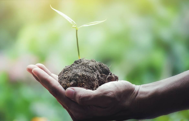 Carrefour Монако подписывает Пакт: энергосбережение и устойчивое развитие ускоряются