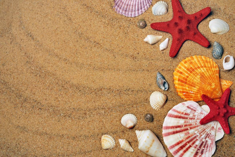 Летний сезон - 2020: стала известна дата открытия пляжа Ларвотто