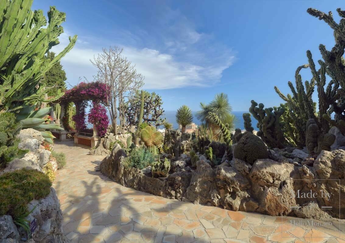 Экзотический сад будет закрыт на реновацию весь 2021 год