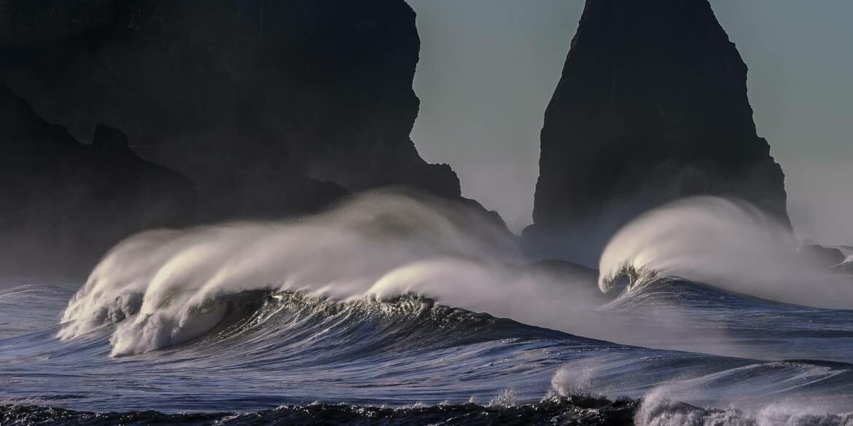 Поможем сохранить Океан: примите участие в аукционе Thalas