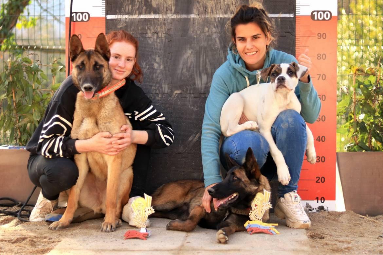 SKY DOG: перевоспитание и шанс на новую жизнь