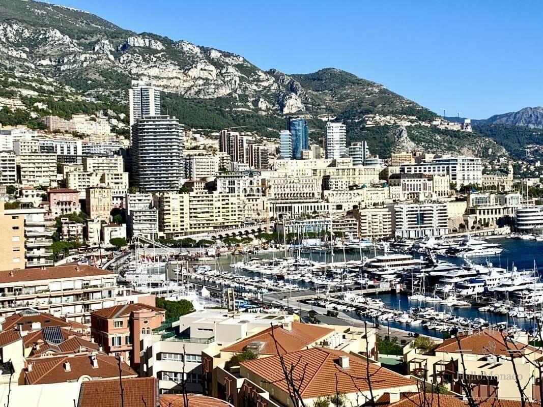 Два заведения культуры в Монако снова открыли свои двери