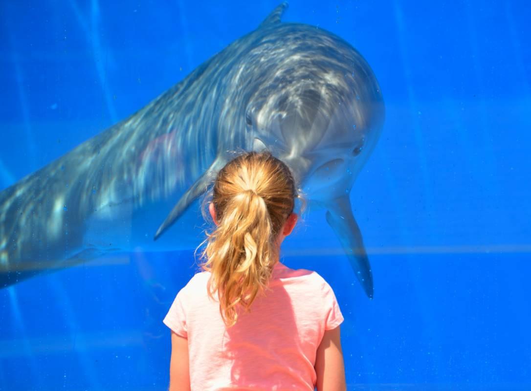 Фонд принцессы Шарлен и Океанографический институт позаботятся о детях долины Ройя