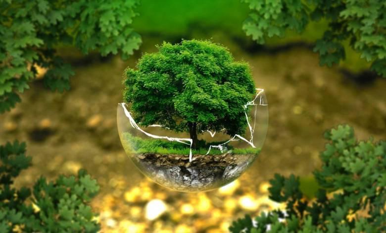 Телевизионный фестиваль Монте-Карло за экологию планеты