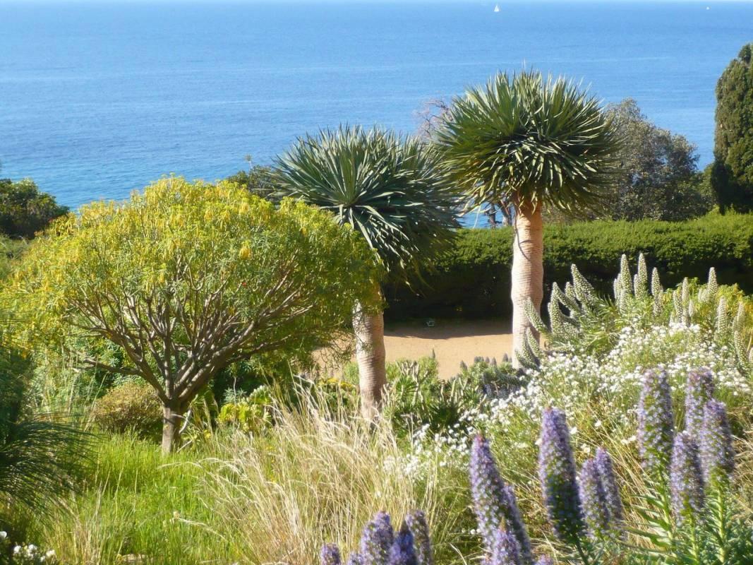 Восхитительные сады недалеко от Княжества Монако