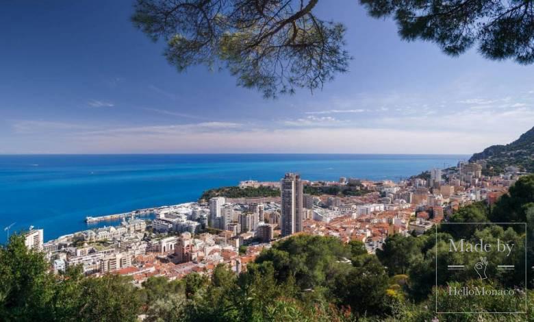 В Монако хотят снова выступить против обязательной вакцинации